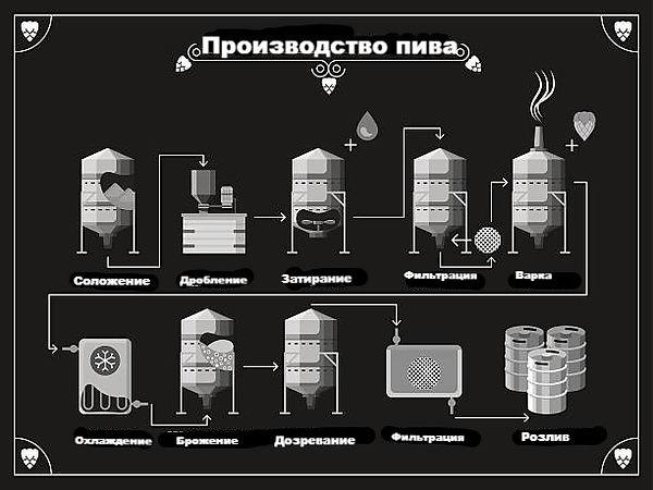 Пиво. Технология_edited.jpg