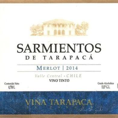 Sarmientos-de-Tarapac-aacute-.jpg