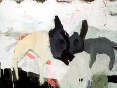Dog Rabbit