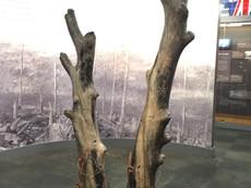 Beaumont Hamel permanent exhibition