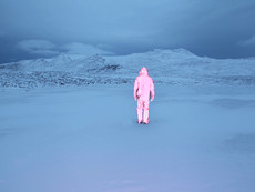 Pink Figure, Blue World