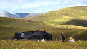 yak hair tent