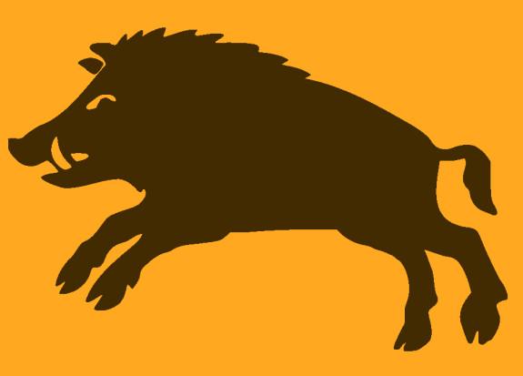 Happy Tibetan New Year Of The Pig!
