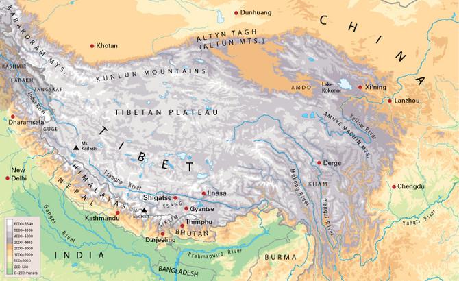 Food Of The Himalayas