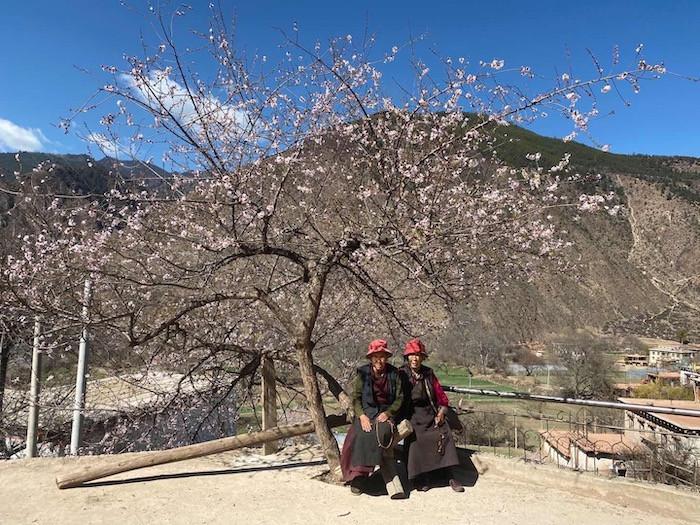 Springtime in Tibet