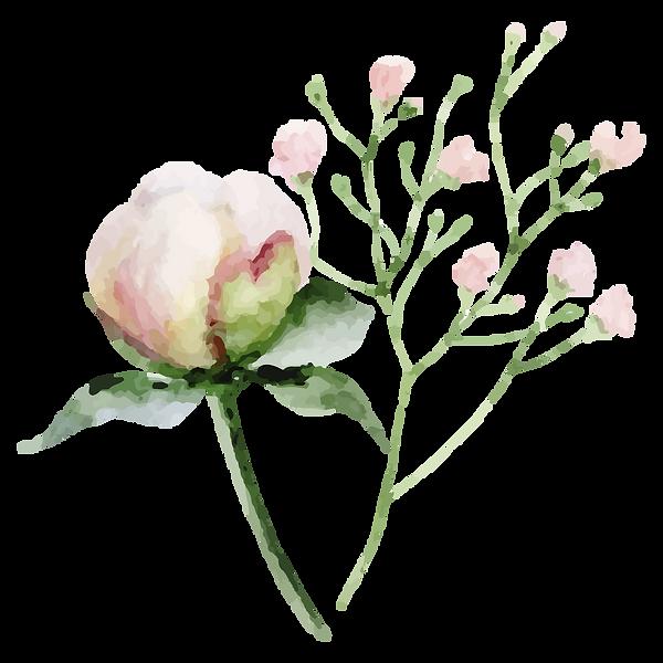 Fleur_2.png