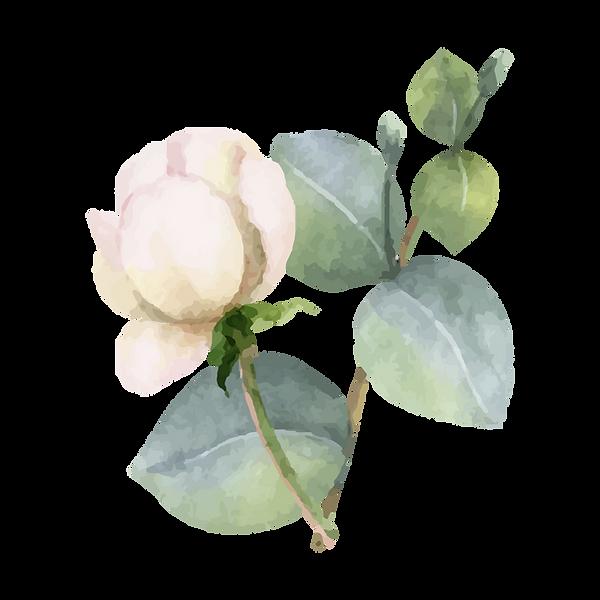 Fleur_6.png