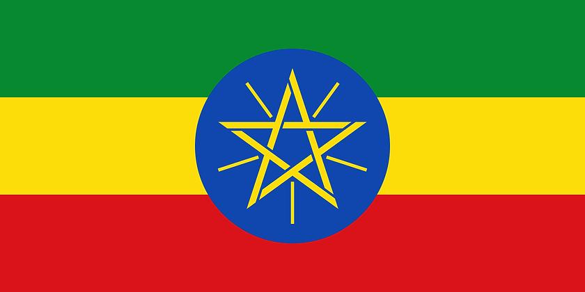 Ethiopia - Guji (Light Med)