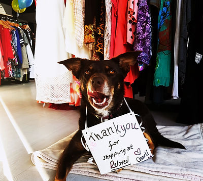 Rescue dog with thank you sign in front of Reloved Fashion clothes