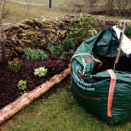 How to use composted bark and decorative wood chip in your garden