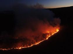 Brush Fire - Woodbury Twp