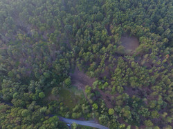 Wooded Property - Bedford Co