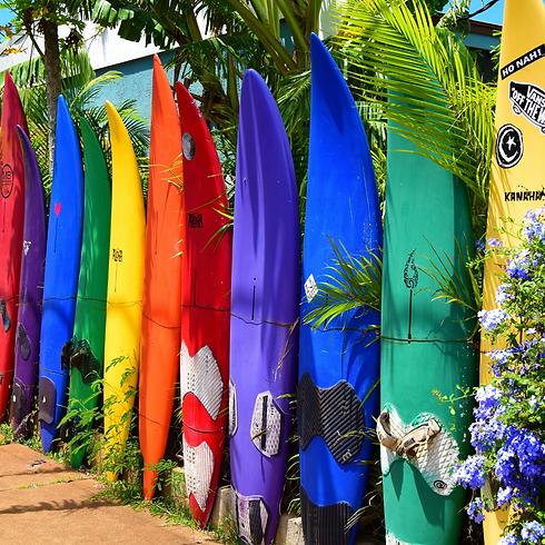 hawaii surfboards.png