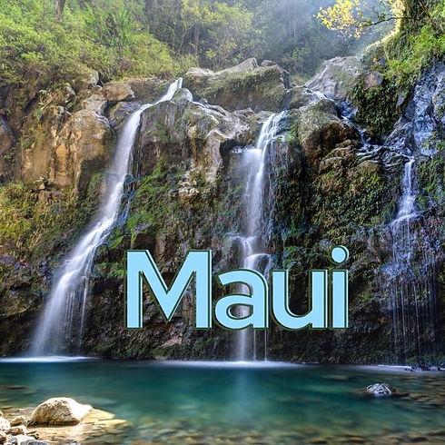 Maui header small.jpg