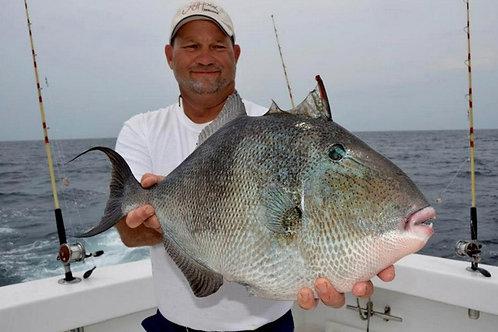 8 Hour Fishing Trip