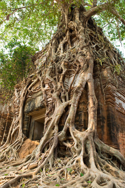 Kor Ker, Cambodia
