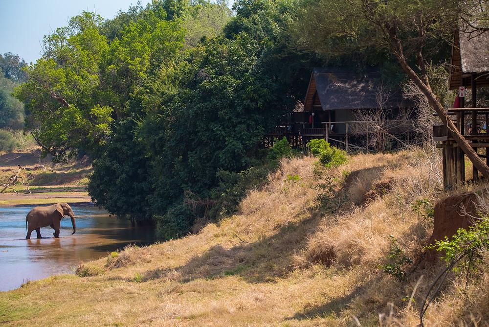 pafuri camp, south africa