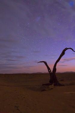 Deadvlei, Namibia