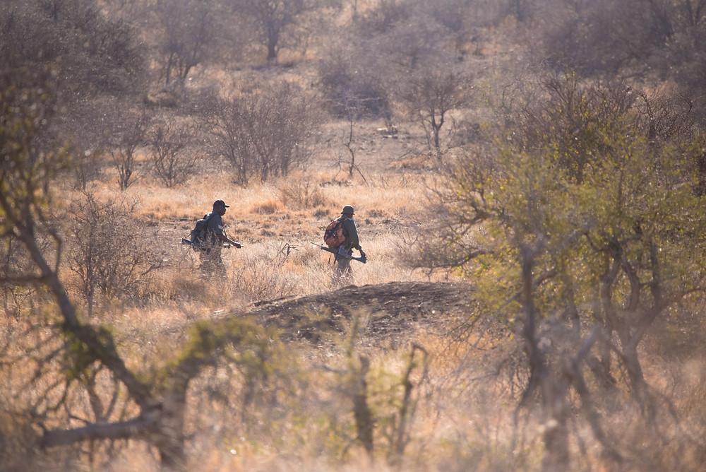 rangers, Kruger National Park