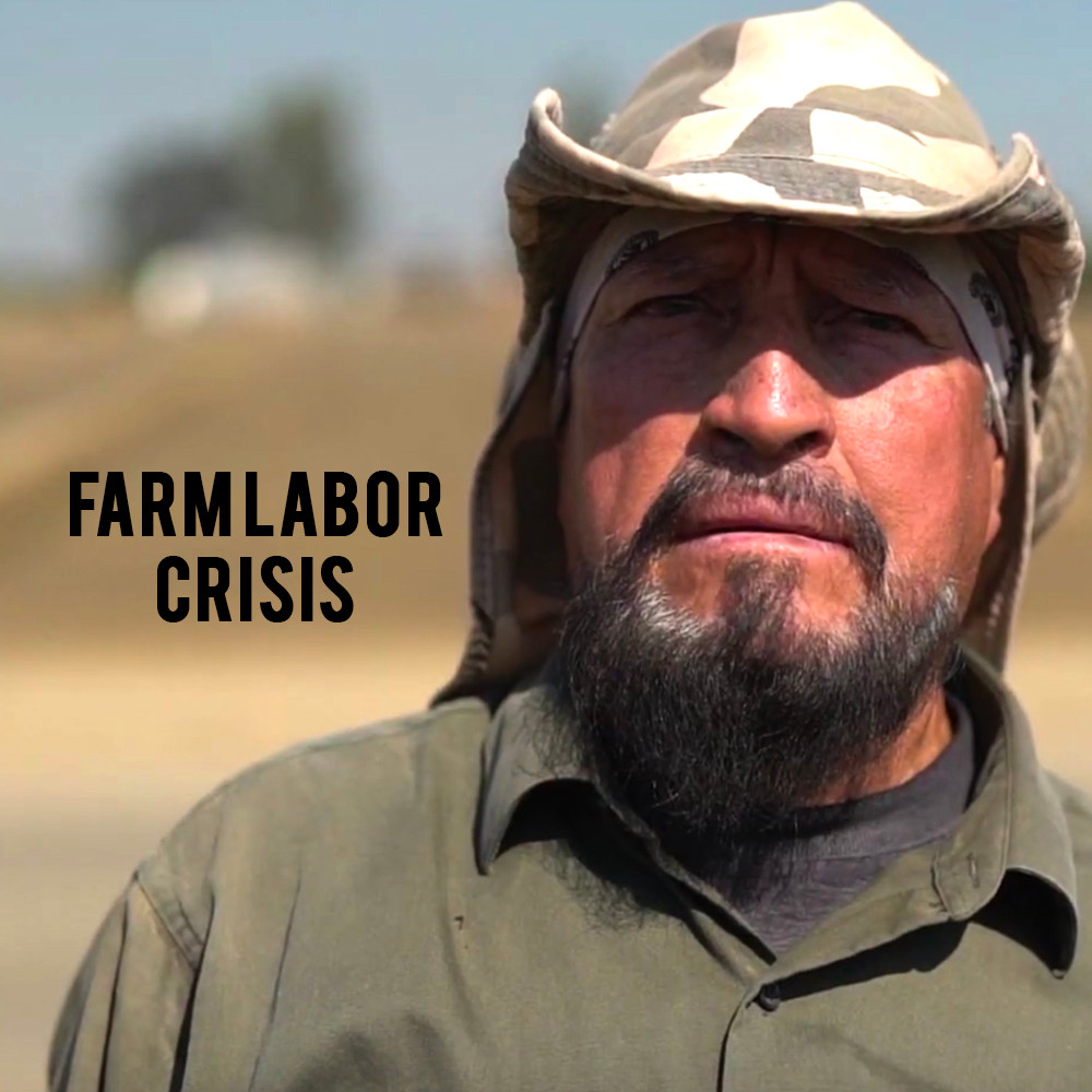 American Grown: My Job Depends on Ag - Farm Labor Crisis