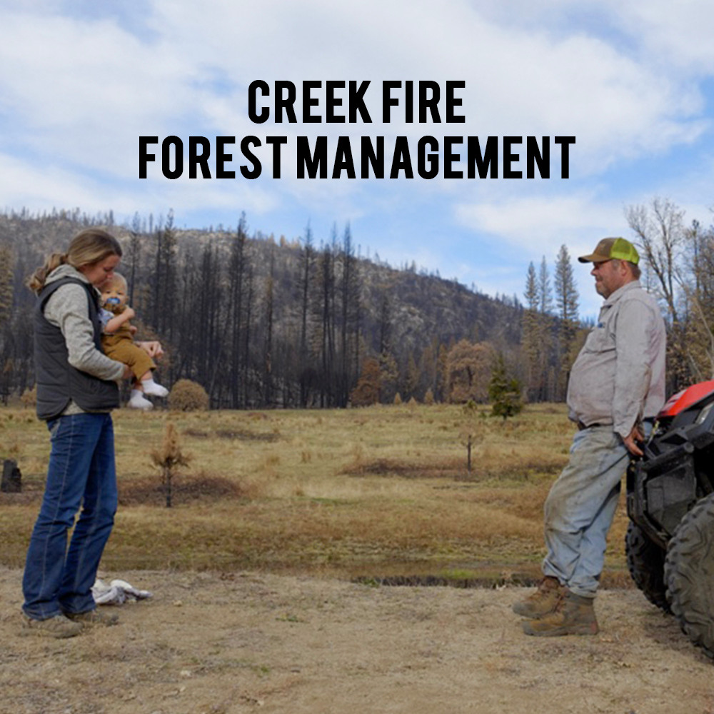 American Grown My Job Depends on Ag - Creek Fire and Forest Management