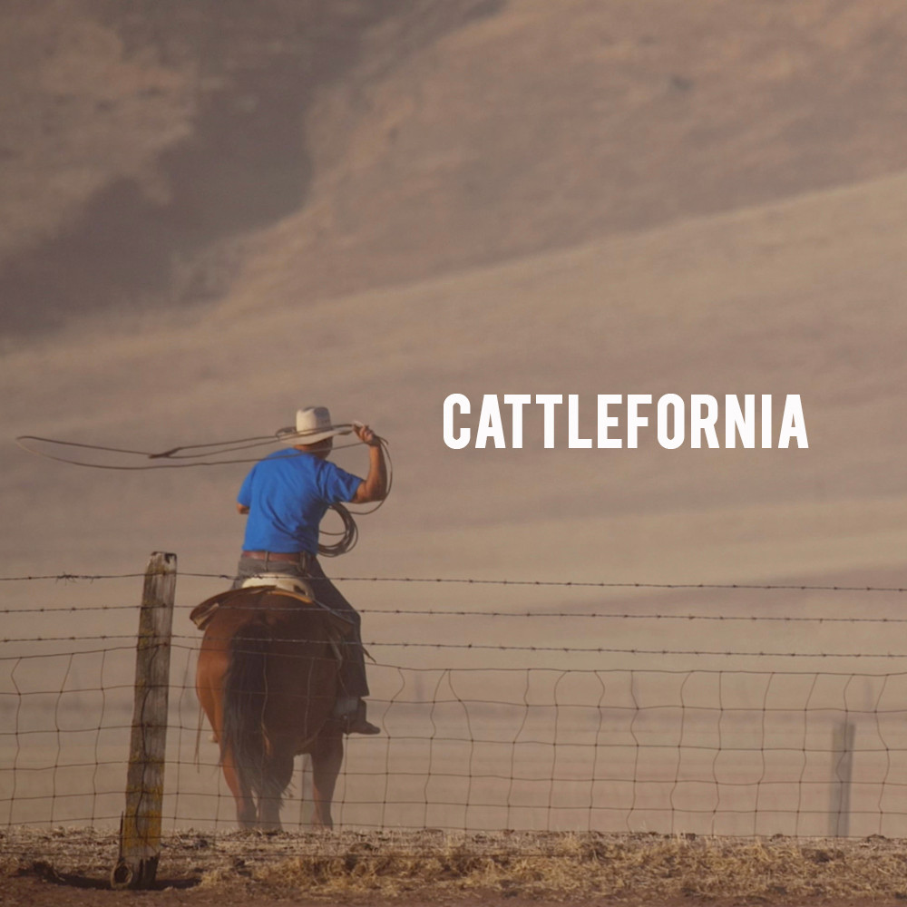 American Grown: My Job Depends on Ag - Cattlefornia