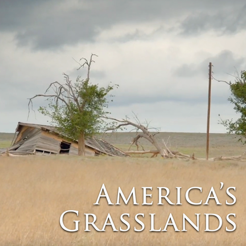 Outside Beyond the Lens - America's Grasslands