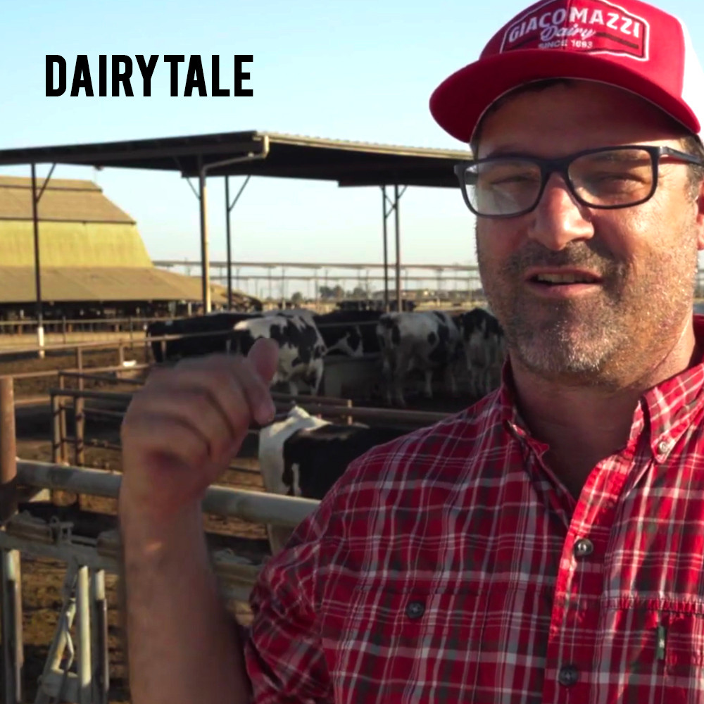 American Grown: My Job Depends on Ag - Dairytale