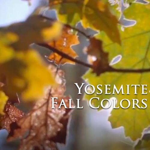 Outside Yosemite Fall Colors Season 1
