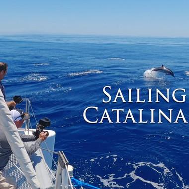 Sailing Catalina