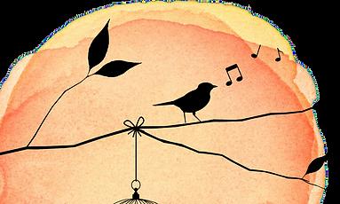 sparrow-on-blob-transparent-bg_edited.pn