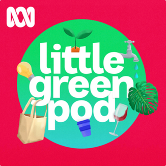 LITTLE GREEN POD