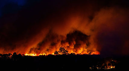 Bushfire-2_Sebastian-Kappen.jpg