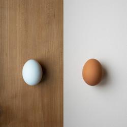 White egg on brown background beside brown egg on white background