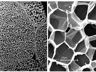Nekompatibilita medzi EPS polystyrénom a povlakovou krytinou na báze PVC-P