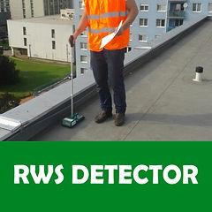 RWS DETECTOR.jpg