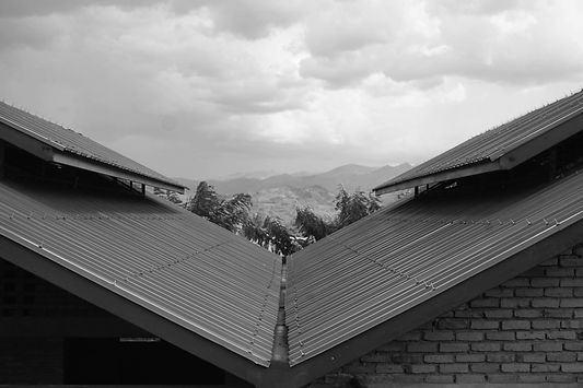Roof BW.jpg