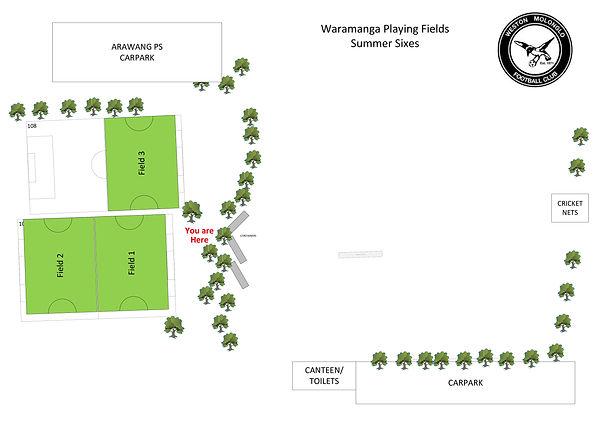 Waramanga Fields A1 size Summer Sixes 20
