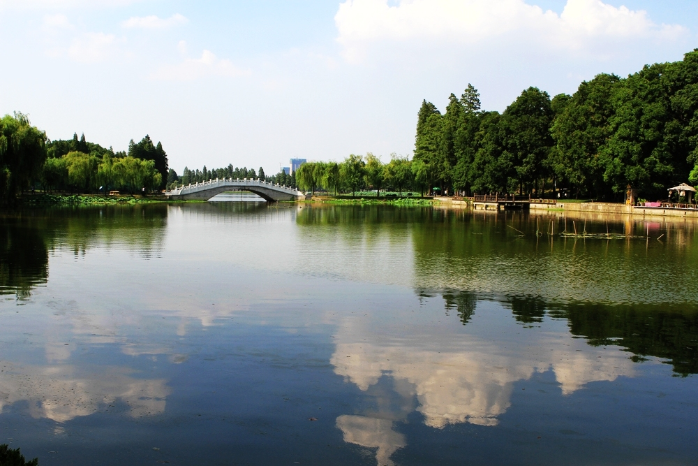 Bridges on the lake