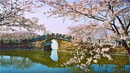 Historical Arch Bridge