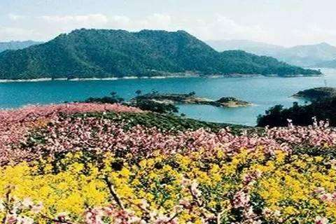 Island of Osmanthus