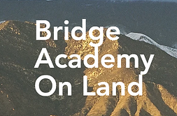 The Bridge Academy .png