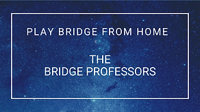 the bridge professors (2).png
