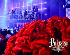 Palazzo Nightclub Playadel Carmen Nightlife