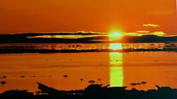 Sunset-Wittenborn