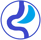 Sleeve icon1.png