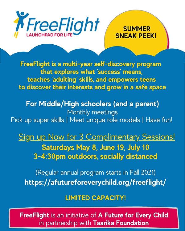 FreeFlightFlyer.JPG