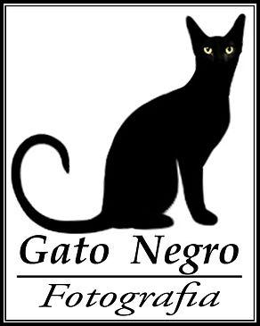 black-cat inst.jpg