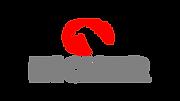 eicher logo.png