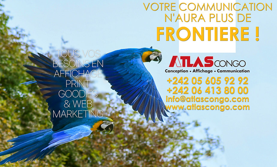 Campagne ATLAS Congo 2019 (parrot) Site